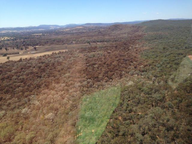 Barnawartha Bushfire